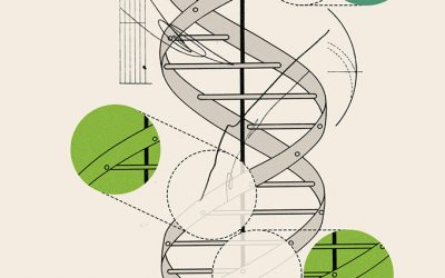 Synthetic Biology……. Its Hope and Promise