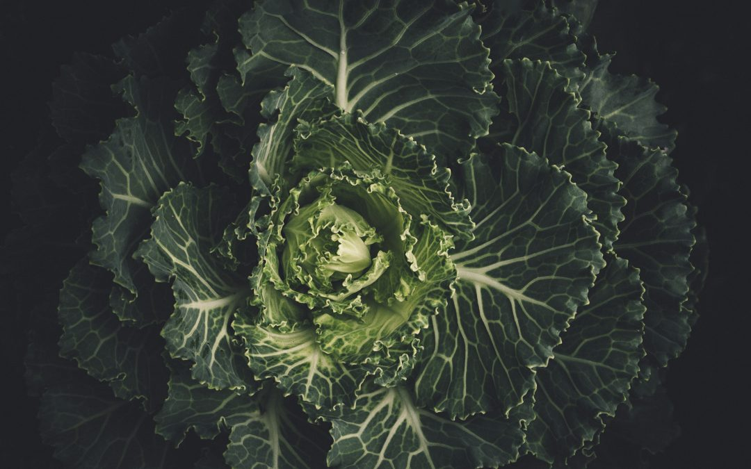 The Nature of Food Must Change